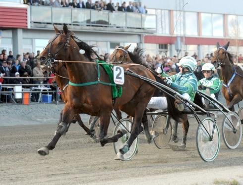 Inför V86: Två hästar i en
