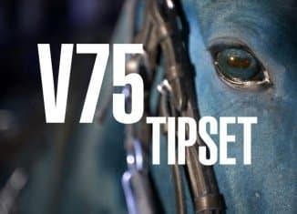 v75 tips