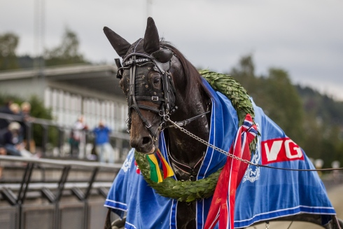 norsk derbyvinnare