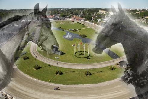 begravda hästar