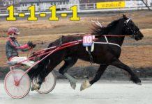 med Örjan Kihlström i vagnen blir väl hästen 30 meter bättre