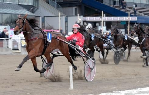 årets häst 2017