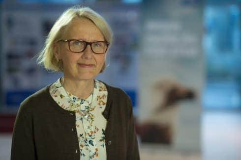 För första gången föreslås en kvinna bli ordförande i Svensk Travsport