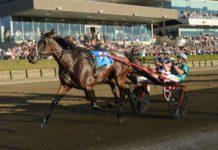 Australiens snabbaste travhäst