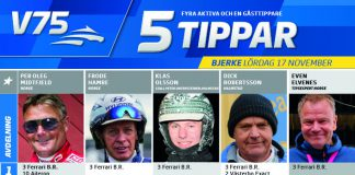Fem tippar V75 till Bjerke 17 november 2018