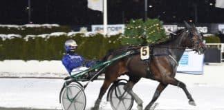 Diedrik Meilink har två intressanta hästar till start