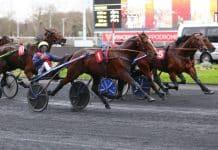 Norge har fått en ny Prix d'Amerique-häst