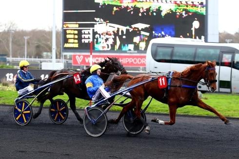 En av Frankrikes bästa travhästar slutar tävla