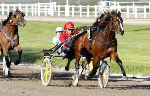 Två svenska hästar tar chansen i Lotterian i Neapel
