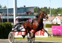 sex hästar klara för Åbys storlopp