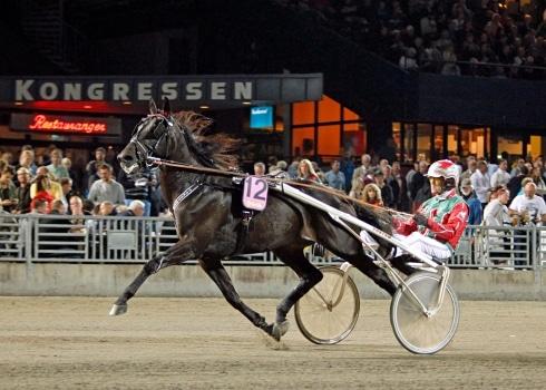 Dansk elitloppshäst har tävlat färdigt