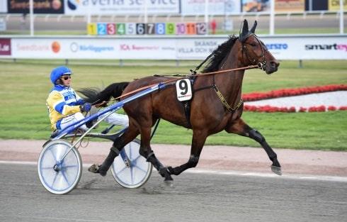 Jag tror att han vinner när som helst, säger Timo Nurmos