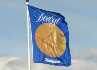 Finalfälten lottade i Svenskt Travderby och Derbystoet 2019