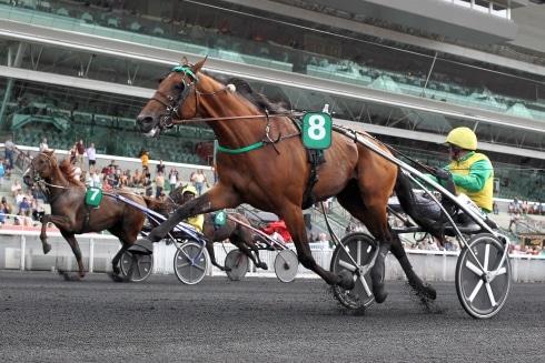 Goop körde världsrekord på Vincennes