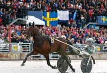 Propulsion laddas mot Elitloppet 2020