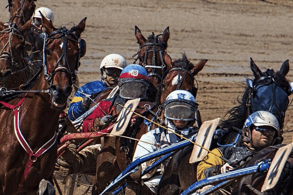 """Travsport är sedan länge väldigt populärt i Sverige. Vi är många som suttit fastklistrade i tv-soffan när det äntligen är dags för trav. Vi följer med spänning upploppet med tipskupongen i ett fast grepp, och hejar fram vår häst. Eller så väljer man att besöka en travbana någonstans i Sverige, och på nära håll se hästarna blåsa förbi på upploppet. Ishockeyspelare är en liten grupp av människor som uppskattar travsport enormt mycket. Det är en tydlig överrepresentation bland hästtokiga aktiva och före detta hockeyspelare som är involverade i travsporten. Några är glada entusiaster som tycker om att spela på hästar, andra är hästägare som noga följer sin hästs tävlingsresultat och utvecklingskurva. Charles """"Challe"""" Berglund Den största traventusiasten bland hockeyspelare är sannolikt Challe Berglund. Han är en mycket välmeriterad före detta ishockeyspelare som vunnit det mesta inom ishockey, samtidigt som han alltid har haft en stor passion för hästar och travsport. Hans medievänliga personlighet gav honom möjlighet att medverka i olika travprogram på TV, däribland TV4:as långkörare Vinnare. Hela hans tillvaro sammanvävs med travsporten: • Challe är en erfaren hästägare • Han är gift med kusklegenden Stig H Johanssons dotter • Han jobbar idag för Kanal 75 som är en del av ATG Ishockey och trav har också en affärsmässig koppling. SHL (Svenska Hockey Ligan) var tidigare sponsrad av ATG. Nu samarbetar istället ATG och TV4 med att visa SHL-hockey i det nyskapade programmet ATG Hockey Live, i C mores streamingtjänst. Därmed så kvarstår kopplingen mellan ishockey och trav, men i en lite annorlunda kommersiell skepnad. Givetvis är Challe Berglund en av programledarna i ATG Hockey Live. Mats Sundin Mats Sundin gjorde sig känd som ishockeyspelare för sin långa räckvidd och vassa backhand. Med skridskorna på hyllan sedan några år tillbaka, får """"Sudden"""" istället utlopp för tävlingsinstinkten på travbanan genom sitt ägarskap av stjärnhästen Nimbus C.D. Nimbus har de senaste åren """