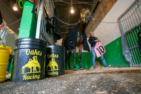 Dopingskandal skakar hästsporten i USA