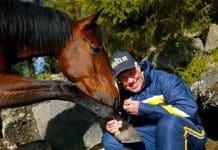 """Inför V75/jackpot: """"Hästen har aldrig i hela sitt liv känts bättre"""""""