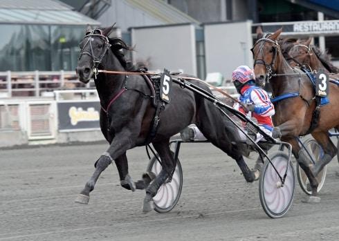 """Inför V75/jackpot: """"Två av mina hästar har aldrig varit bättre än de är nu"""""""