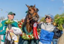 Inför V75/jackpot: Stenströmer gör tummen upp för Handsome Brad