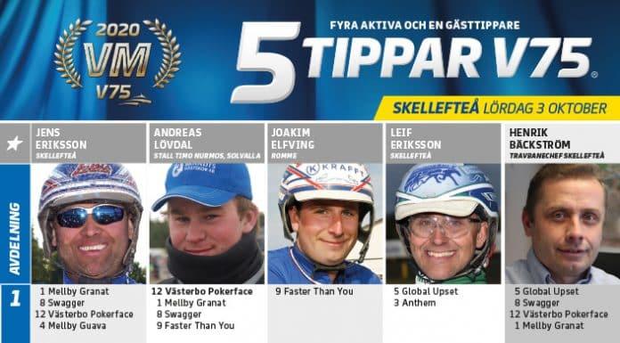 Fem tippar V75 till SKELLEFTEÅ 3 oktober 2020