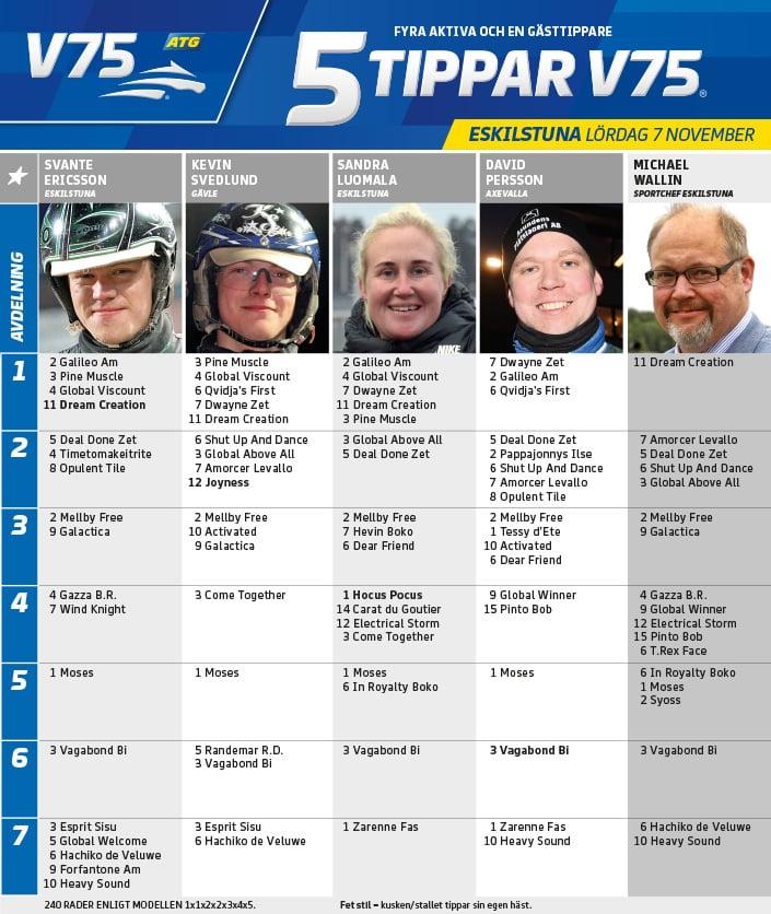Fem tippar V75 till Eskilstuna 7 november 2020