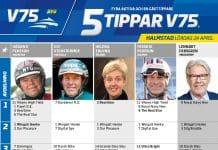 Fem tippar V75 till Halmstad 24 april 2021