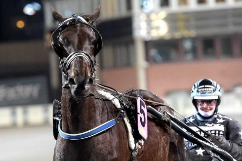 """Inför V86®: Lindbloms hästar i form: """"Jag är supernöjd"""""""